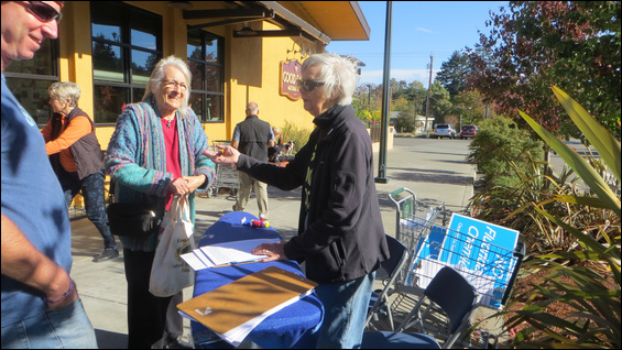 Ginger Souders-Mason collects initiative signatures on an ironing board in front of Good Earth in Fairfax