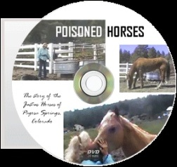 DVDs of Poisoned Horses are available to buy from IAOMT, 8297 Champions Gate Blvd. (Ste. 193), Champions Gate, FL 33896. Phone: 863-420-6373.